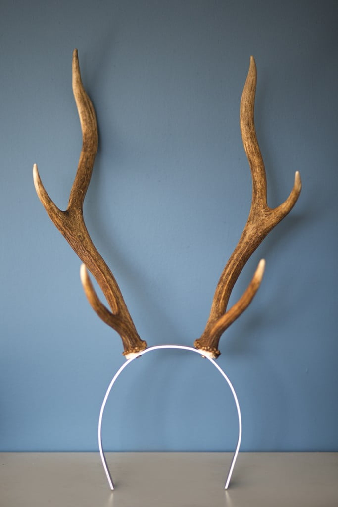 As soon as I laid eyes on these humanely sourced antlers, I knew I had to use them!